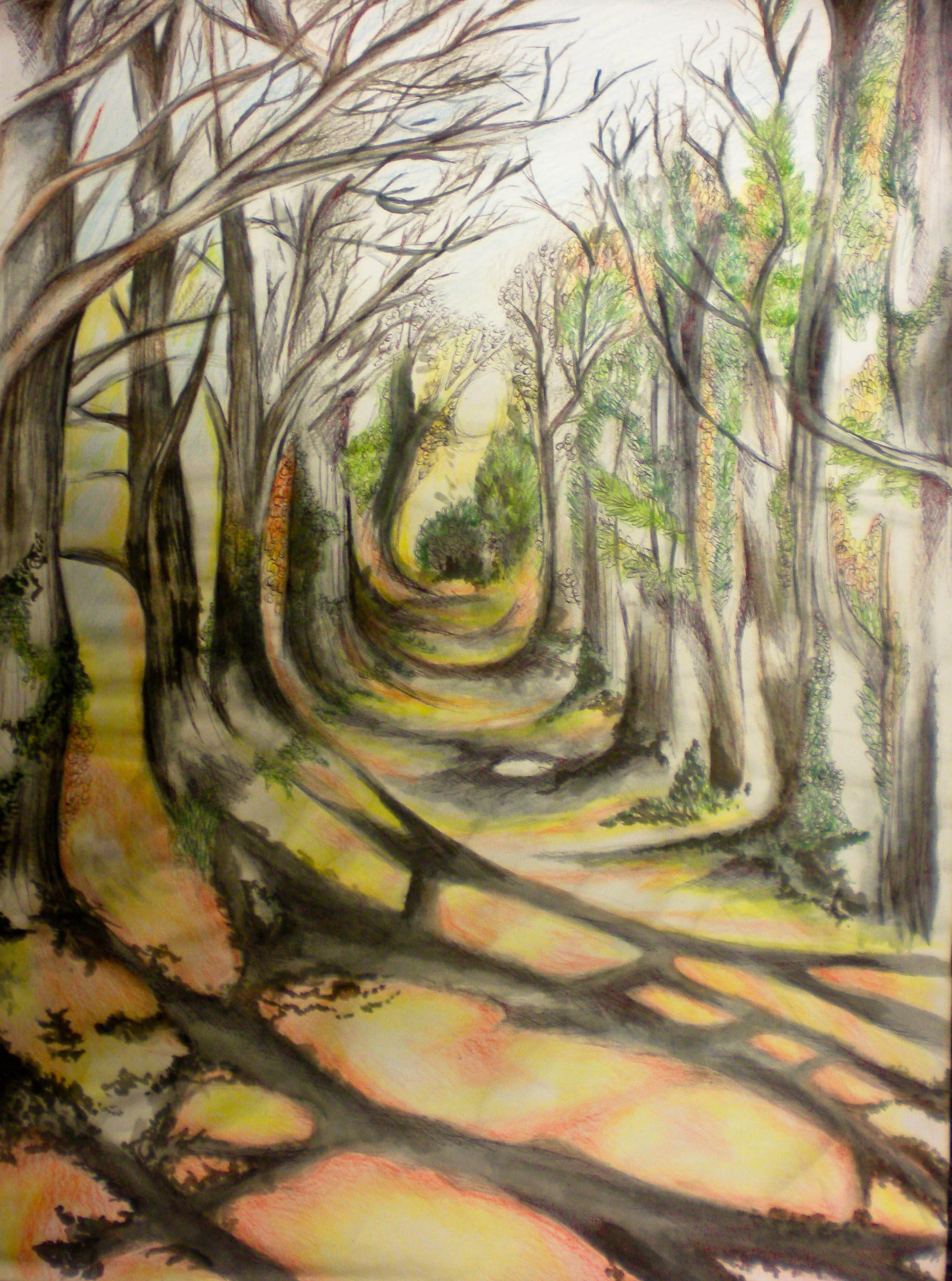 Drawing 7 design blog for Forest scene drawing