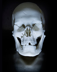 16_RichardIII-Skull